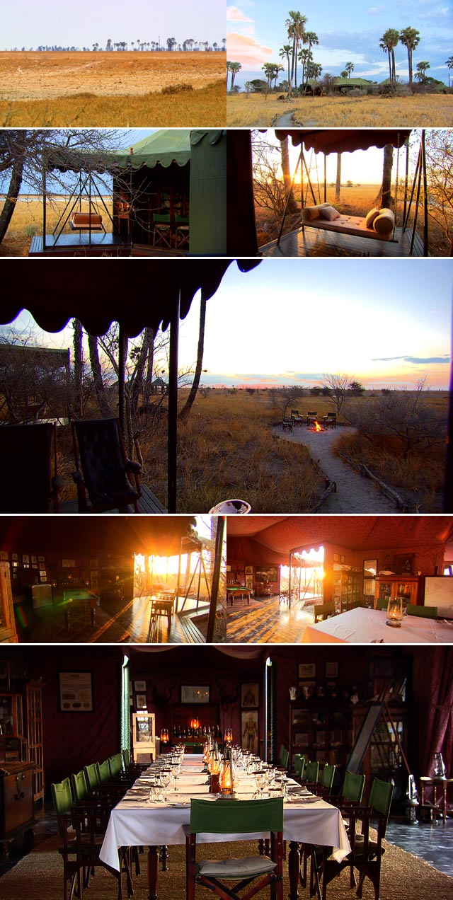 Top Travel visits Jack's Camp in Botswana